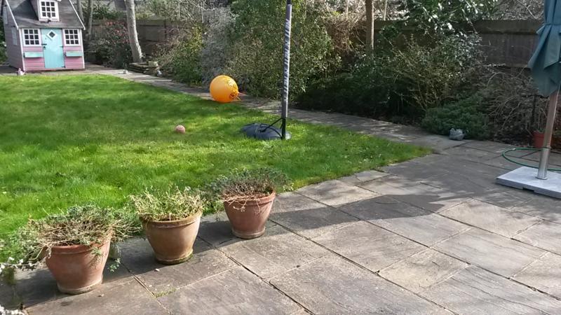 Nina's garden before 2