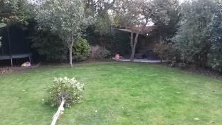 Kaari's garden before 3