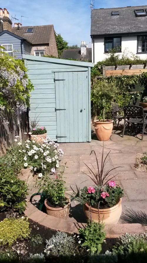 Elaine's garden after 2