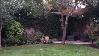 Kaari's garden after 8