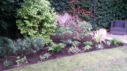 Kaari's garden after 3