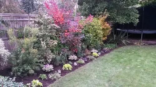 Kaari's garden after 1