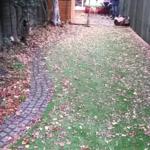 Border of garden before planting