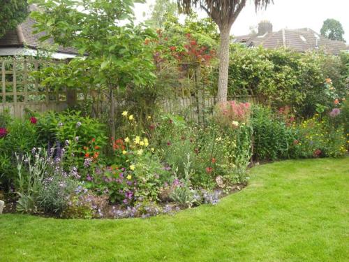 Sue's garden after