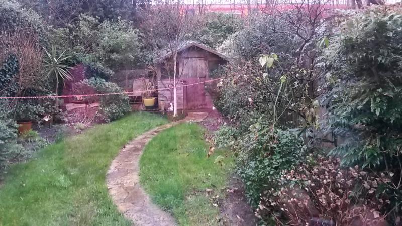 Rowan's garden before 2