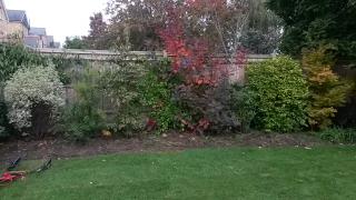 Kaari's garden before 1