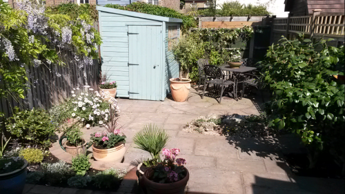 Elaine's garden after 1