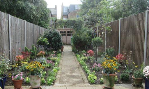 Twickenham garden planted up - lots of colour!