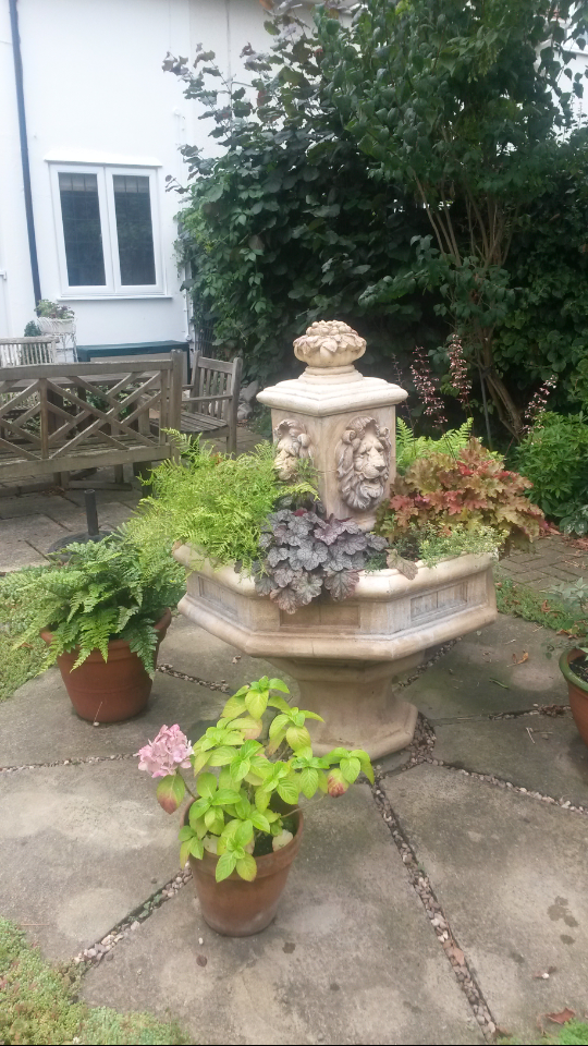 Fountain planted up